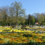 Kurpark Bad Füssing im Frühling